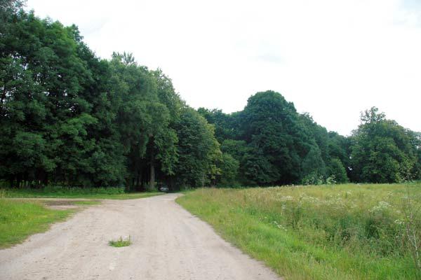 Park w Tuhanowiczach (04/07/2009)