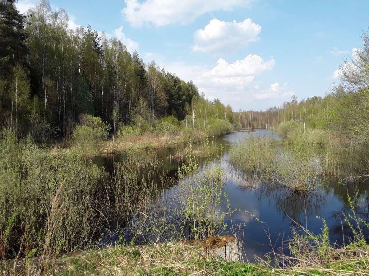 Река Бродня. Вид на хутор.