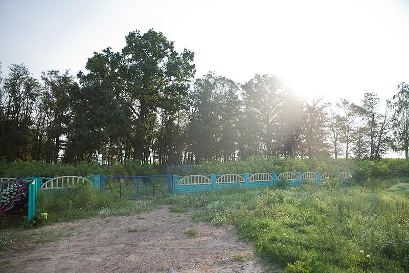 Старое кладбище в Матрунках