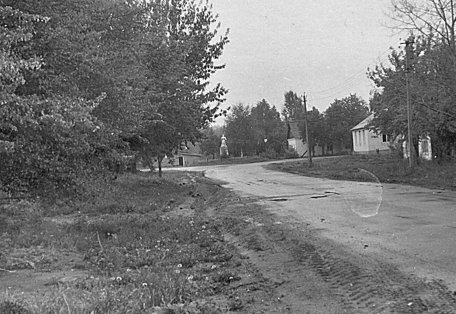 Улица в деревне Савичи
