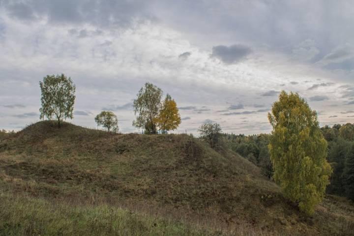 Радамля (Чавускі раён). Гарадзішча. Другая пляцоўка