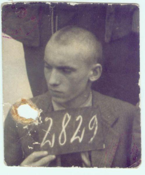 rok 1943 lub 44.Ryszard Kamiński ur.w Pińsku .fotografia z legitymacji niemieckiego obozu.