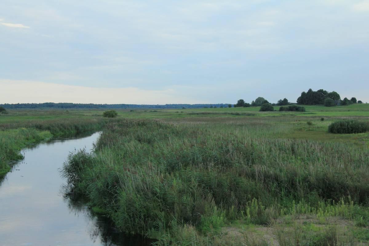 Rzeka Dzitwa - dawne Giesztowty na prawym brzegu