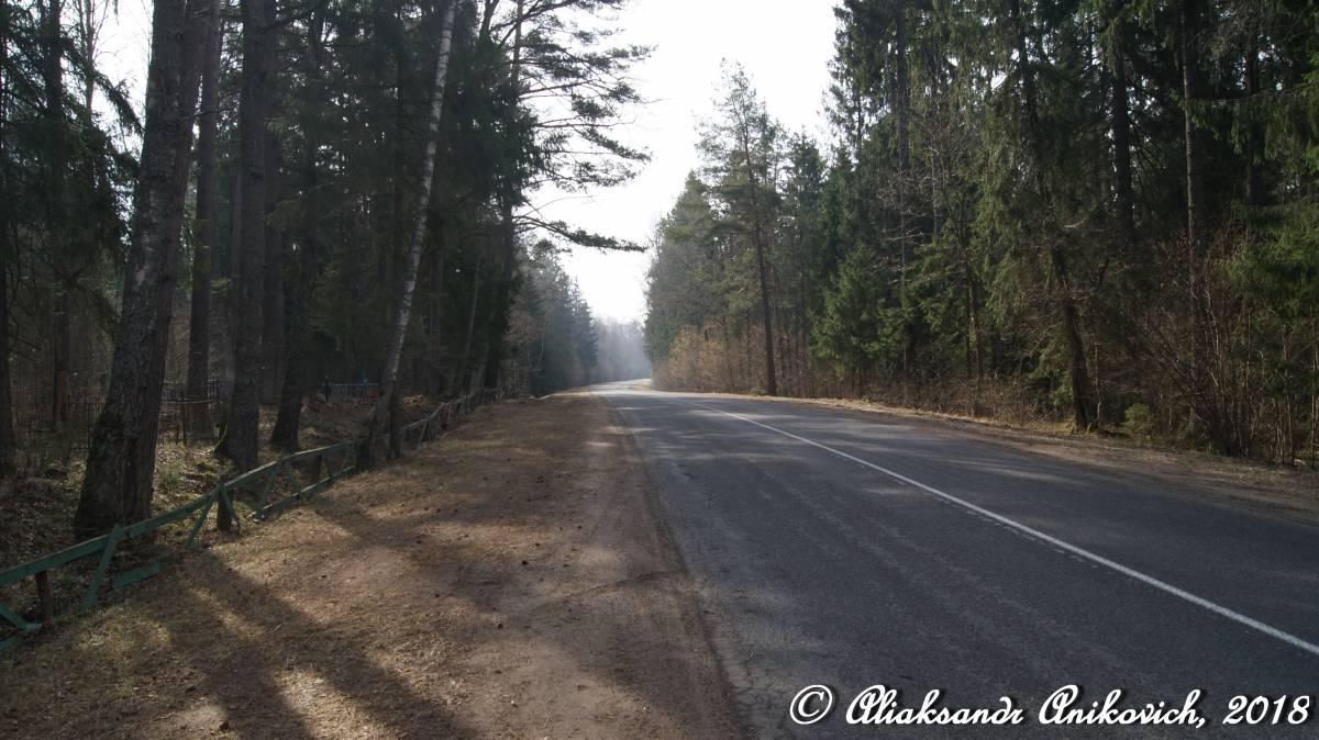 Дорога Р62. Чашники — Бобр — Бобруйск. Участок между Черея - Бобр. <br>#подорогамбеларуси