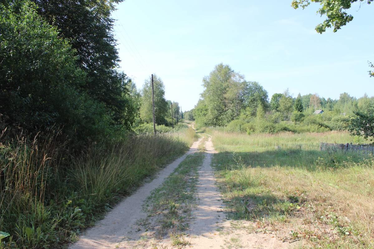 Главная дорога в деревне.