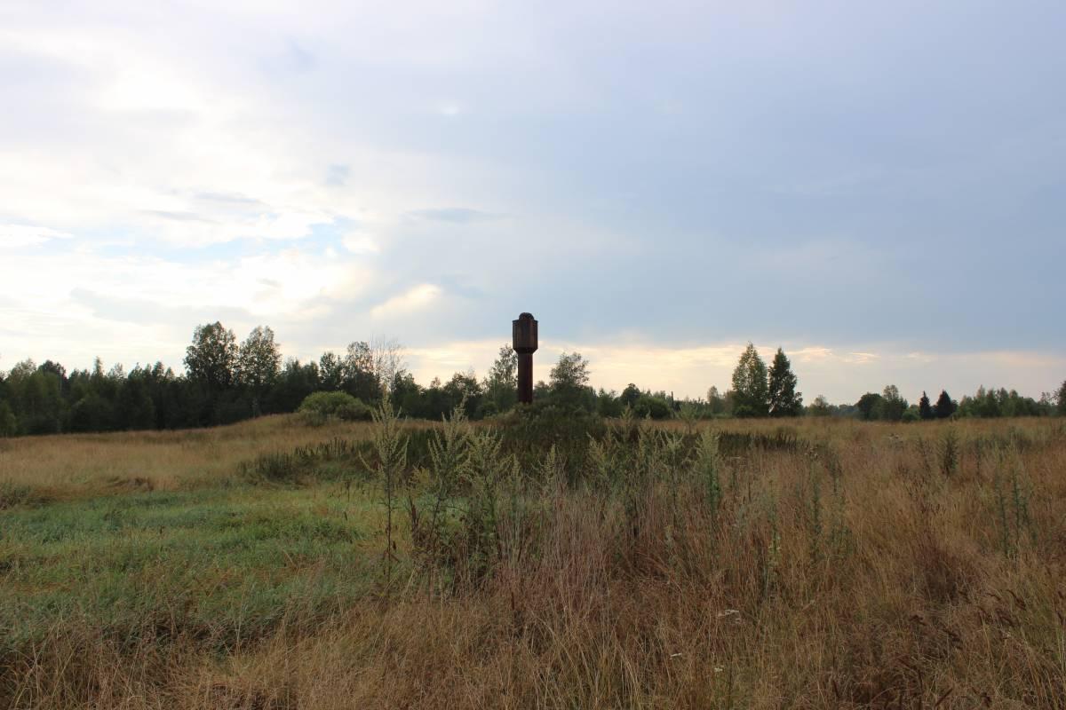Водонапорная башня с гнездом аистов.