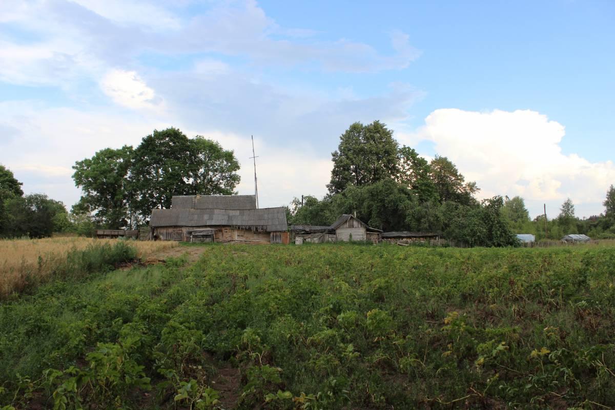 Один из жилых домов - снято со стороны задворка, картофельное поле, коровник, сад.