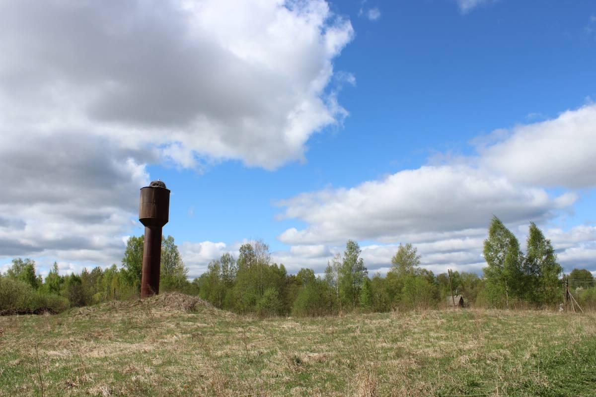 Башня и аисты.