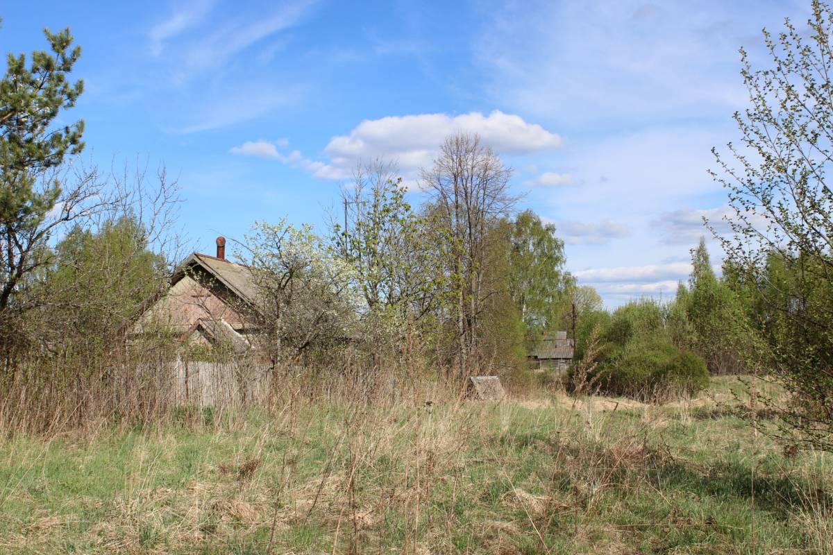 Брошенные дома, брошенные сады.