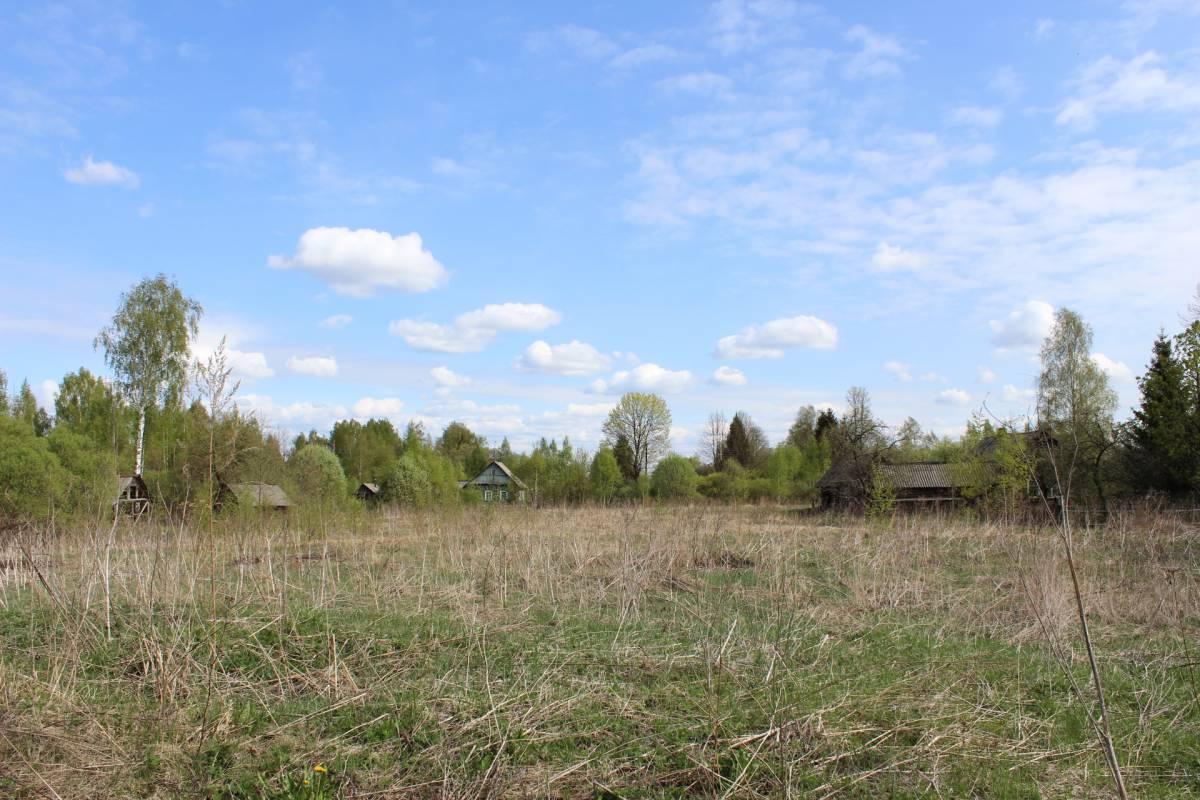 То, что осталось от некогда крупного поселения - несколько домов. Брошенные сады, окна, в которых не горит свет...