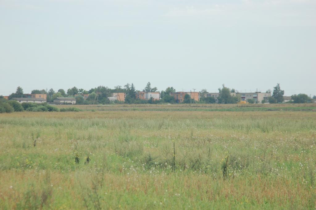 Вид на поселение со стороны дороги к кладбищу.