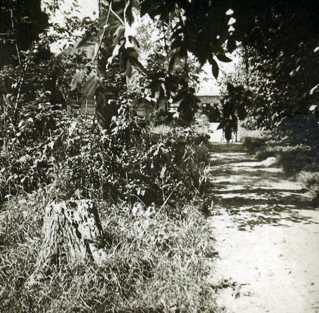 droga do Dworu