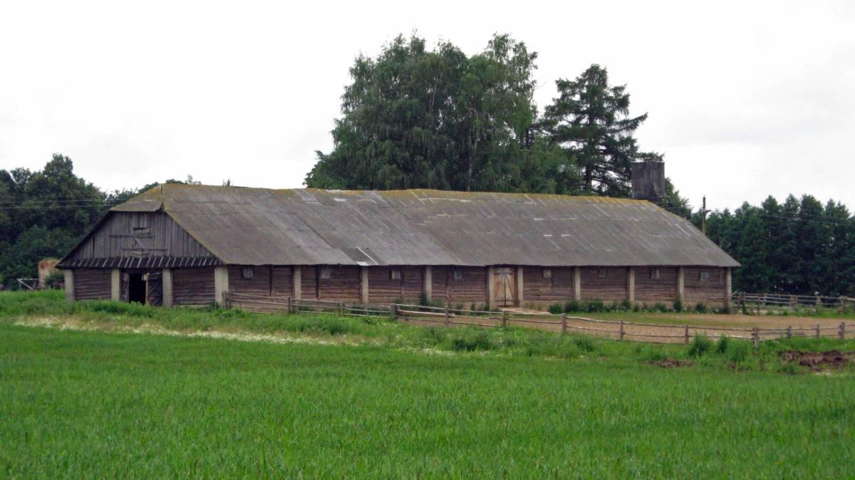 Колхозная конюшня советских времен на месте владений помещика Девчупольского. Слева из-за угла деревянной конюшни выглядывает полуразрушенное кирпичное здание помещичьих времен.