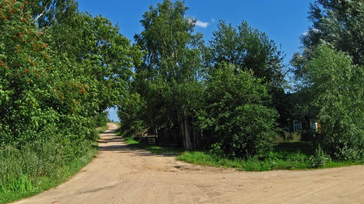 В деревне Милушево.