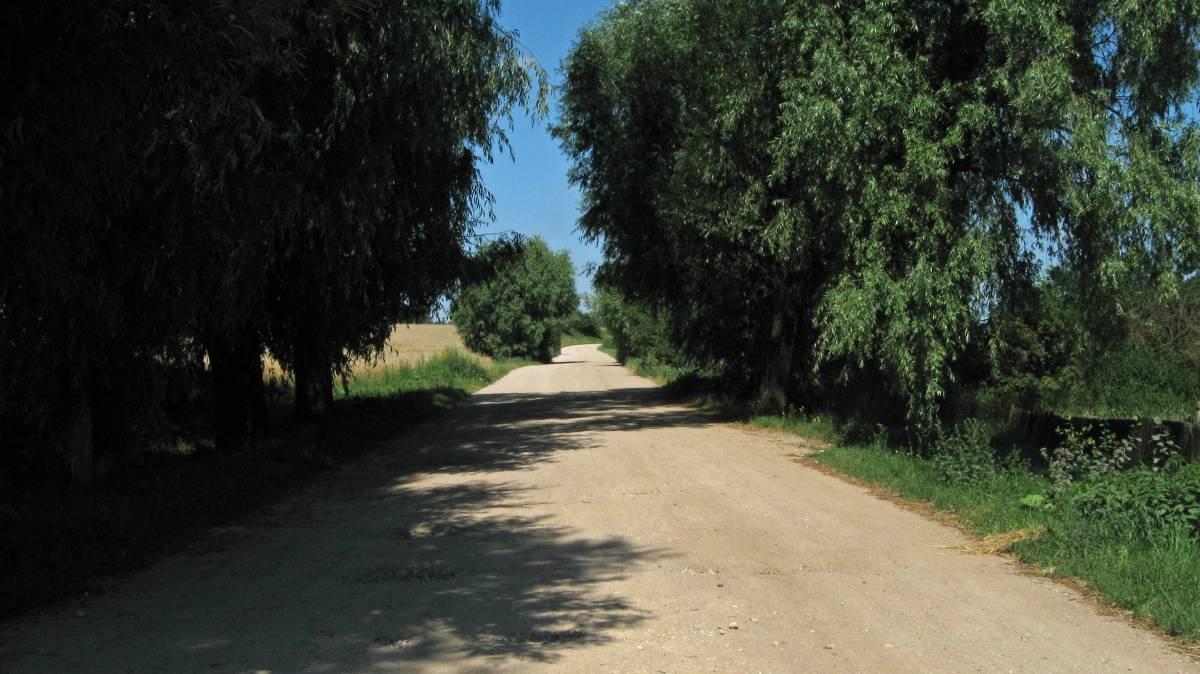 Сельская дорога в деревне Милушево.