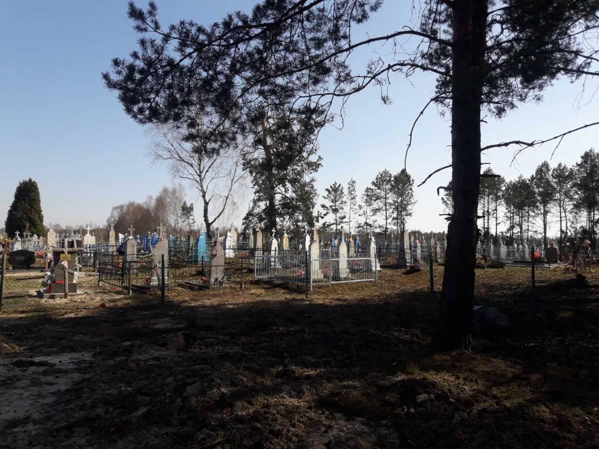 кладбище д. Ляхчицы