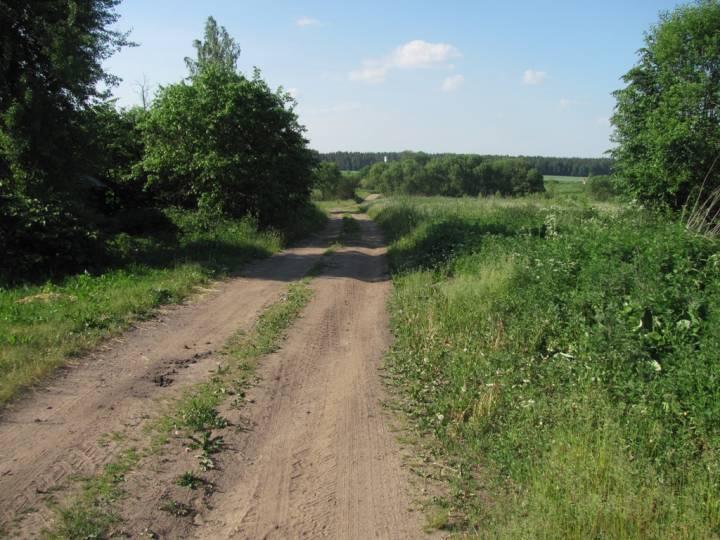 Дорога от магазина на ферму и прямо через лес в д. Дубровка Могилёвского района.