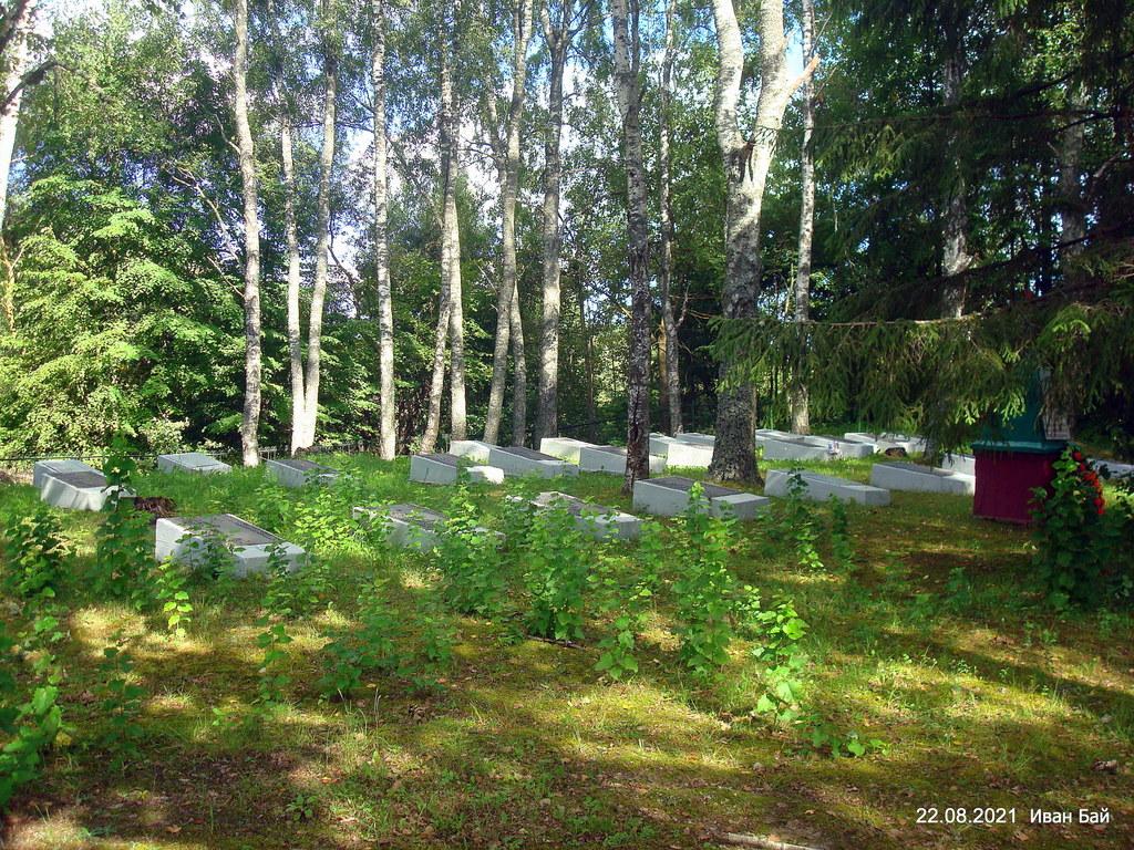 Братская могила № 2411 в д.Ковали<br>Четырехгранный ступенчатый бетонный обелиск высотой 2.5 м, увенчанный пятиконечной звездой. По обе стороны обелиска - бетонные тумбы, на которых прикреплены плиты с нанесенными фамилиями погибших воинов. Захоронено 612 человек.