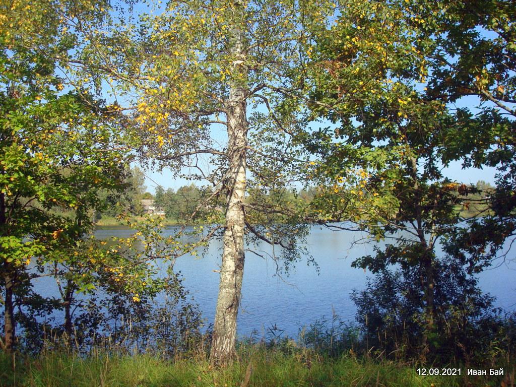 Озеро Ужо около деревни