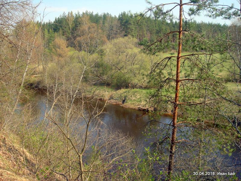 Река Дриса около места гибели Кульнева