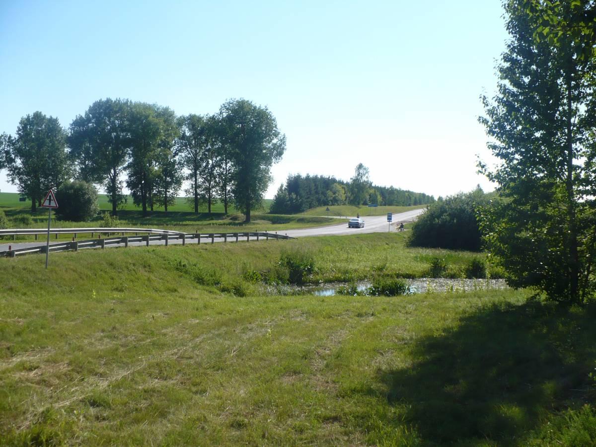 Za tym szpalerem drzew po lewej stronie staі dom rodzinny Jadwigi, teraz rosnie tam pszenica na koіchozowym polu