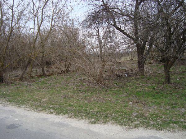 здесь был дом семьи<br>Шкурко Адама Игнатовича