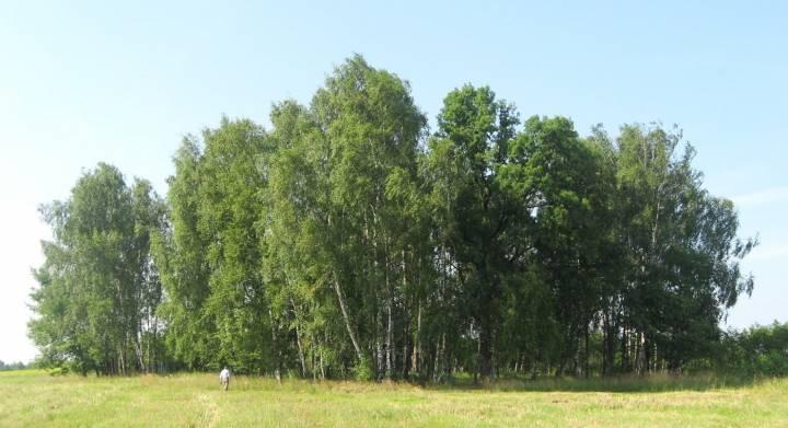 Загореньское кладбище
