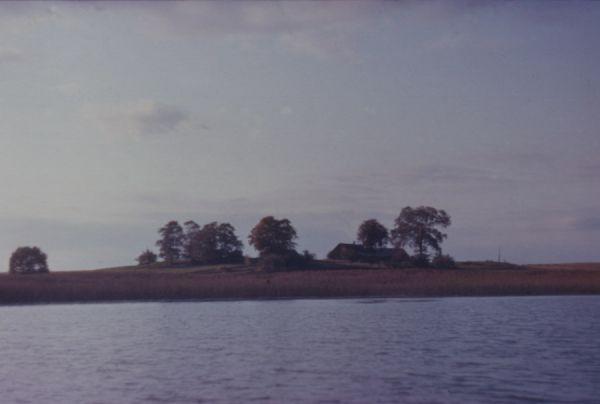 Вид хутора Галины Урбан д. Сойчино 1984г.