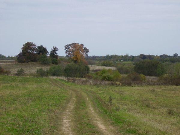 2009г. Дорога в Сойчино.